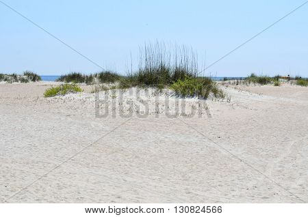 Sand dunes on the beach background Florida, USA.