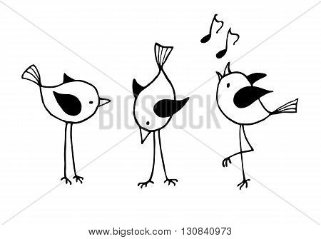 Three funny cartoon birds. Vector black and white illustration
