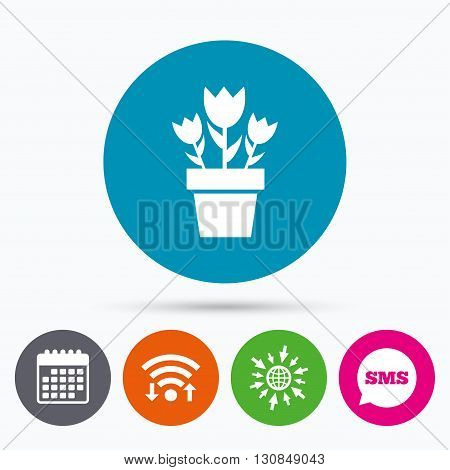 Wifi, Sms and calendar icons. Flowers in pot icon. Bouquet of roses. Macro sign. Go to web globe.