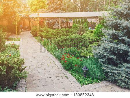 Beautiful landscape design, garden path with stone tiles, evergreen bushes, fir trees, blue spruces and shrubs in sunlight. Modern landscaping. Summer garden or park design.