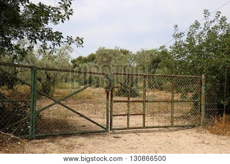 for the iron, high and closed gate is orange garden