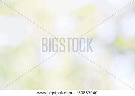 Abstract blurred spring background with white green and blue spots