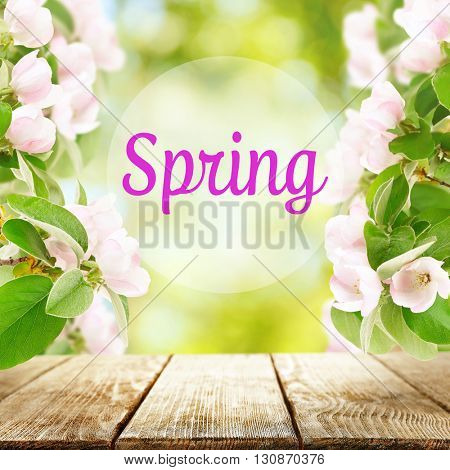 Spring season abstract nature background with green leaves, grass and wooden floor