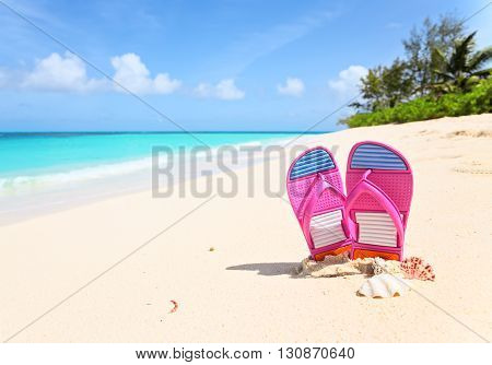 Pink flip-flops and sea shells on a sunny beach. Tropical beach vacation and travel concept