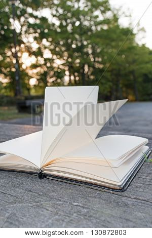 Open book on wooden bench on the background of the rising of the Sun