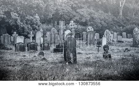 Black and white image of an old creepy cemetery