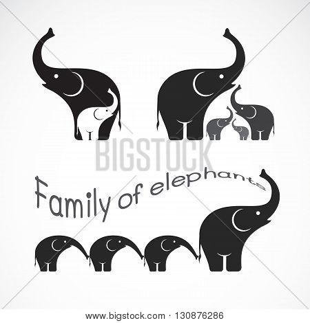 Vector image of family elephants on white background Elephants design Elephants logo