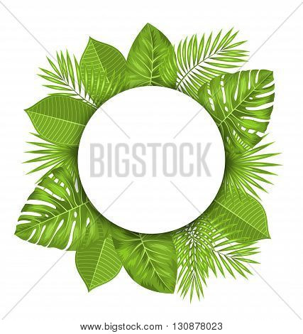 Illustration Clean Card with Text Space and Green Tropical Leaves - Vector