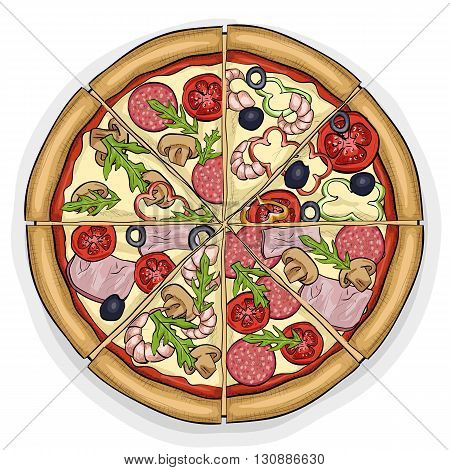 In the picture typical pizza with tomato, mozzarella, cheese and mushrooms. Vector illustration, EPS 10