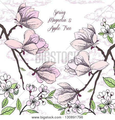Background with magnolia and apple tree. Hand drawn spring flowers. Vector illustration