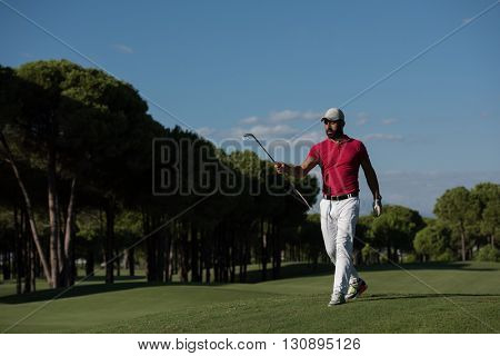 handsome middle eastern golf player carrying driver  and walking at course on beautiful morning