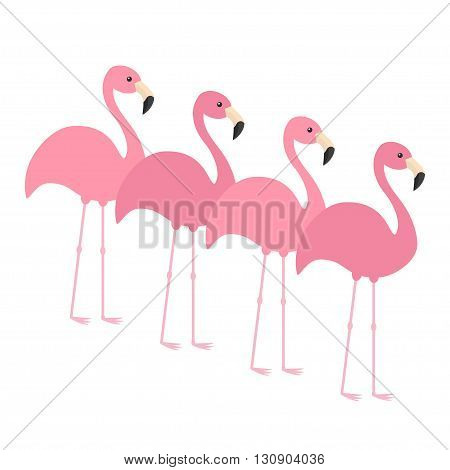 Four pink flamingo set. Exotic tropical bird. Zoo animal collection. Cute cartoon character. Decoration element. Flat design. White background. Isolated. Vector illustration