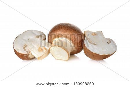 uncooked Swiss champignon brown mushroom on white background