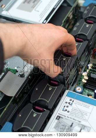 Computer Technician Installing Cooler Fan Into Motherboard.