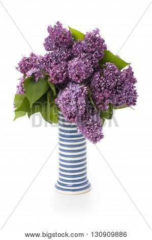 The Lush Bouquet Of Freshly Cut Lilacs In A Striped Ceramic Vase..
