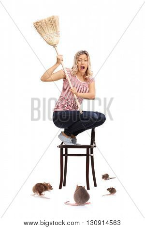 Vertical shot of a young woman attacked by rats isolated on white background