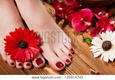 Beautiful classic red pedicure on female hand. Close-up. Picture taken in the studio on the background of flowers