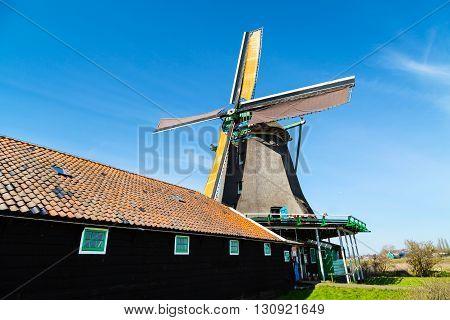 Old windmill in Zaanse Schans, traditional village in Netherlands, North Holland, blue sky, copyspace