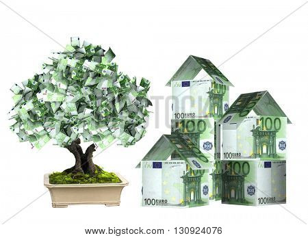 Three houses from euro banknotes and money tree in pot.  Isolated on white background