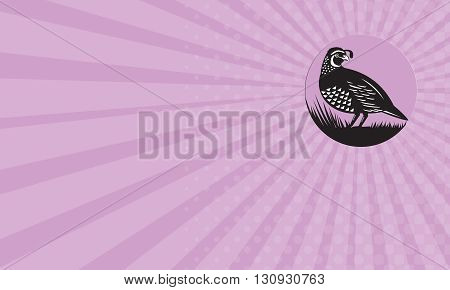 Business card showing illustration of a California valley quail bird looking to side set inside circle done in retro style.