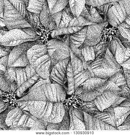 Seamless pattern with flowers poinsettia drawn by hand with black ink. Graphic drawing pointillism technique. Can be used for pattern fills wallpapers web page surface textures