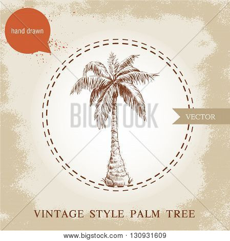 Hand drawn coco palm tree sketch illustration on vintage grunge background. Travel and vacation symbol.
