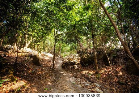 Summer view on tropical island Koh Rong in Cambodia. Landscape of south east Asia.
