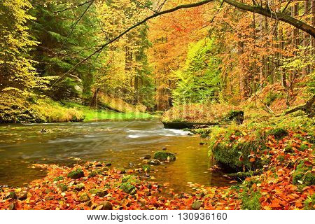 Autumn Mountain River. Blurred Waves,, Fresh Green Mossy Stones And Boulders On River Bank Covered W