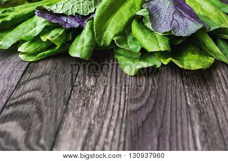 Fresh leaves of sorrel and salad on wooden background. Rustic table with green and violet edible leaves. Place for text.
