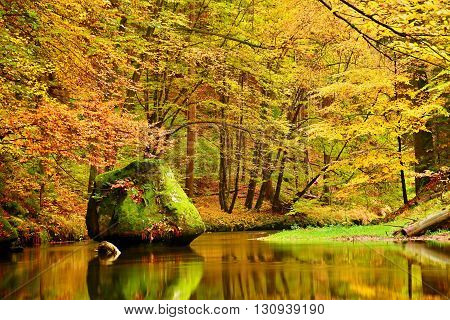 Colors Of Autumn Mountain River. Colorful Banks With Leaves, Trees Bended Above River. Big Boulder I