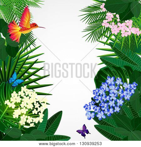Floral design background. Tropical flowers, birds and butterflies.