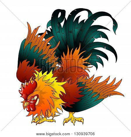 Fighting black-red rooster on a white background. A symbol of 2017 on east horoscope.