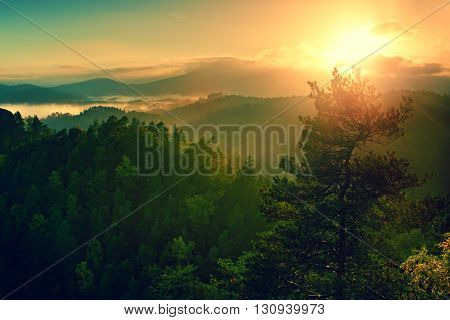View Through Branches To Deep Misty Valley Within Daybreak. Autumn Foggy And Misty Morning On Hilly
