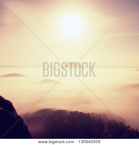 Midnight. Full Moon Night In A Beautiful Mountain Of Bohemian-saxony Switzerland. Hilly Peaks And Tr