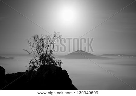 The Island With Tree. Full Moon Night In A Beautiful Mountain.  Sandstone Rock Peaks Increased From