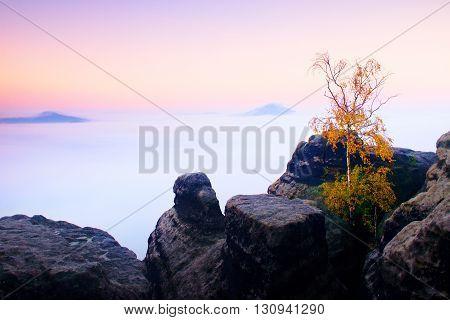 Island In Nowhere. Broken Tree In Misty Ocean. Full Moon Night In  Beautiful Mountain. Peaks  Increa
