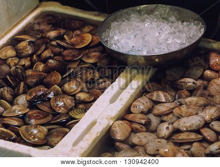 Traditional asian market stall full of fresh clams