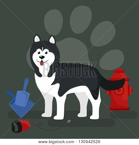 Dog collars and lead for walking, transporting pets vector illustration
