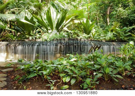 little Waterful, fresh artificial water cascade with rainforest surroundings in Singapore's Botanical garden