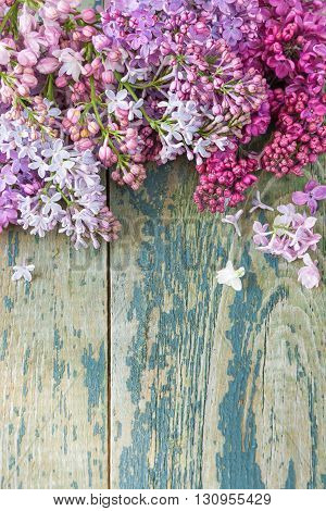 Lush multicolored bunches of lilac flowers on an old wooden background