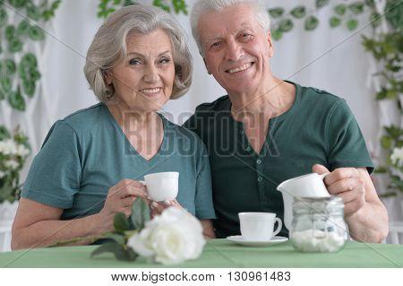 Portrait of a happy senior couple drinking tea