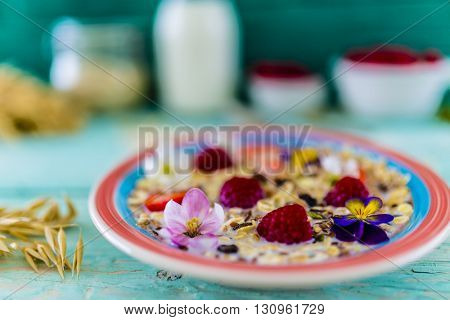 Porridge, Oatmeal with fresh fruit - healthy breakfast, healthy diet