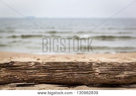 Tree trunk lying on the beach. Ocean background on a cloudy day.