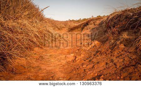 Red clay footpath in prince edward island