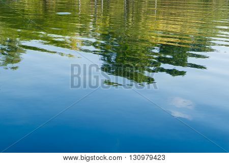 Green tree and blue sky vibrant color reflection in the water