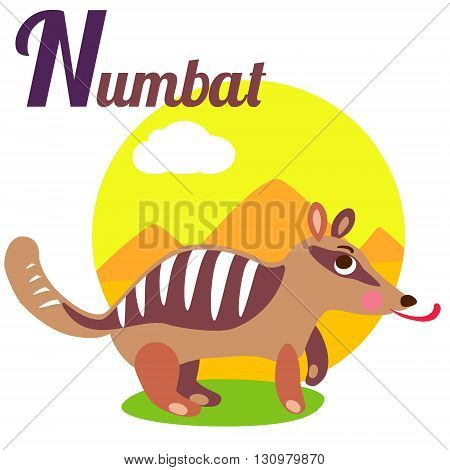 Cute animal alphabet for ABC book. Vector illustration of cartoon numbat. N letter for the Numbat