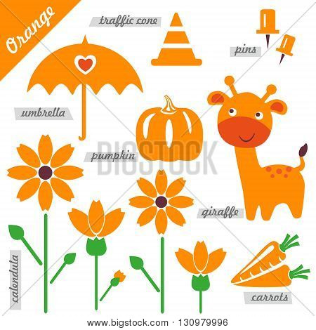 set of images as examples of Orange color for kids educational purposes illustrations page of color book pumpkin giraffe umbrella pins traffic cone carrots calendula flower