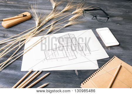 Closeup of construction sketch blank white smart phone screen wheat spikes glasses and stationery on dark wooden desktop. Mock up