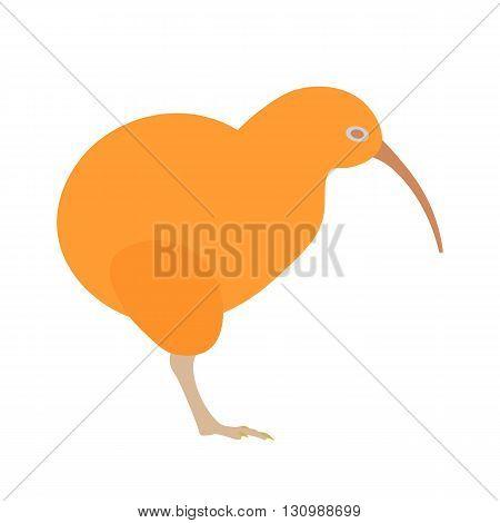Kiwi bird vector illustration. Kiwi bird on white background