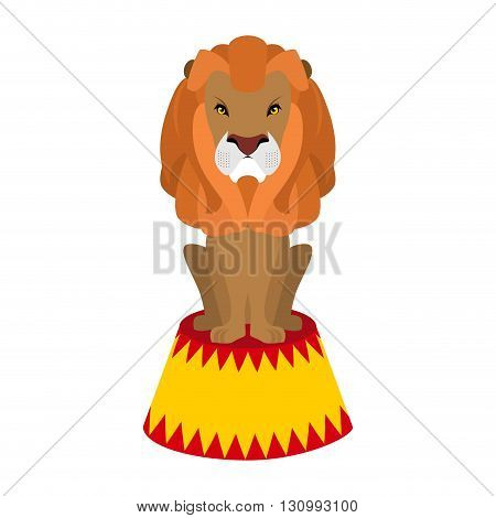 Circus Lion. Wild Cruel Animal Sitting On Pedestal. Big Serious Beast. Predator With Shaggy Mane On